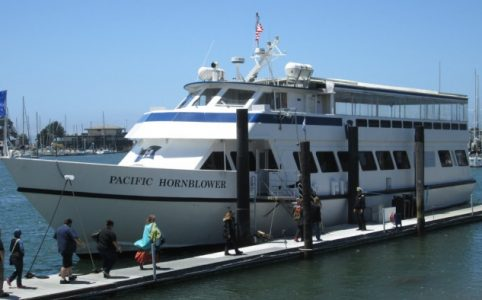 Vapers boarding the Pacific Hornblower
